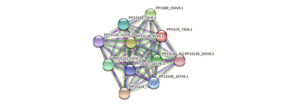PP1S74_73V6.1 protein (Physcomitrella patens) - STRING interaction network