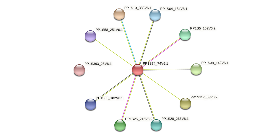 PP1S74_74V6.1 protein (Physcomitrella patens) - STRING interaction network