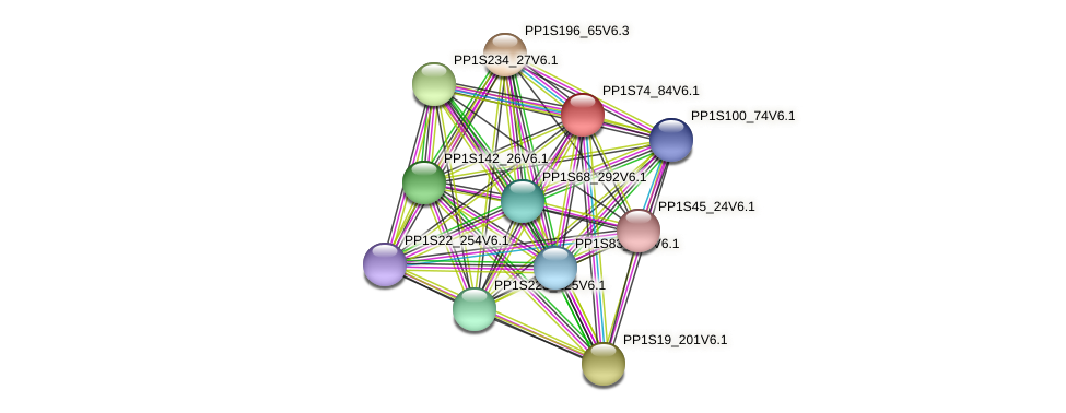 PP1S74_84V6.1 protein (Physcomitrella patens) - STRING interaction network