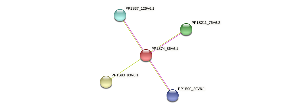 PP1S74_86V6.1 protein (Physcomitrella patens) - STRING interaction network