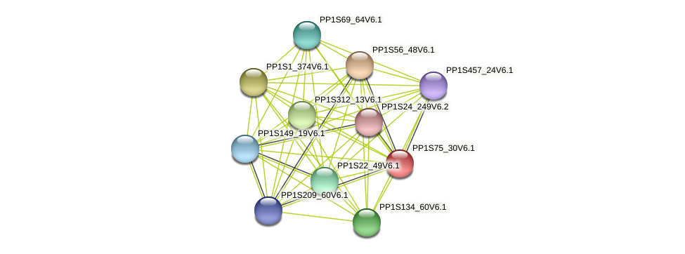 PP1S75_30V6.1 protein (Physcomitrella patens) - STRING interaction network
