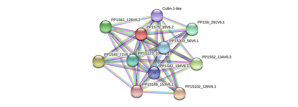 PP1S75_39V6.2 protein (Physcomitrella patens) - STRING interaction network