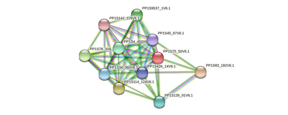 PP1S75_50V6.1 protein (Physcomitrella patens) - STRING interaction network