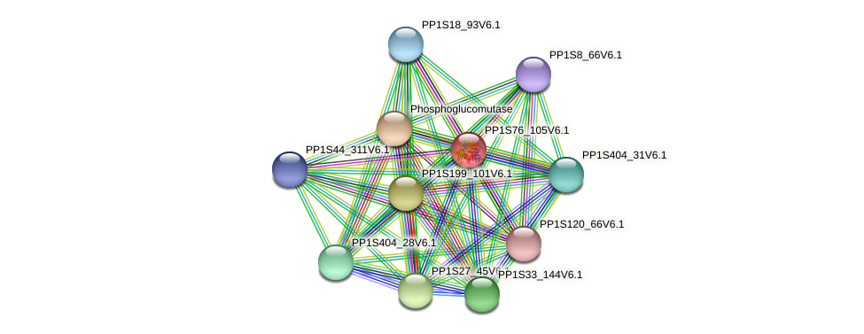 PP1S76_105V6.1 protein (Physcomitrella patens) - STRING interaction network