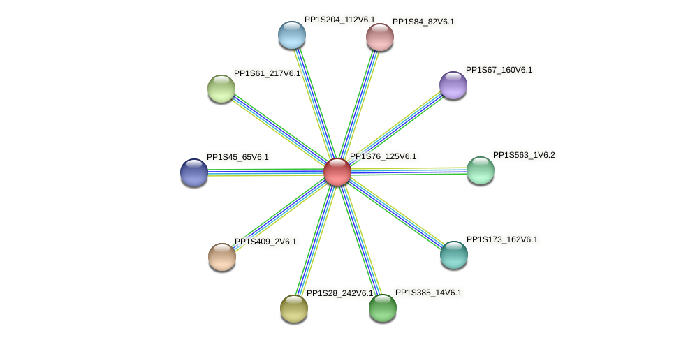 PP1S76_125V6.1 protein (Physcomitrella patens) - STRING interaction network