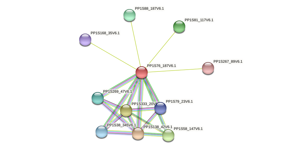 PP1S76_187V6.1 protein (Physcomitrella patens) - STRING interaction network