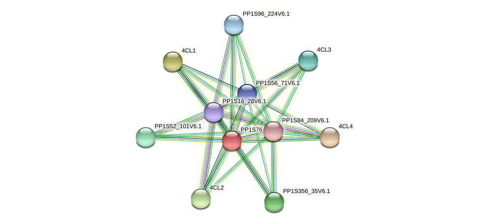 PP1S76_39V6.1 protein (Physcomitrella patens) - STRING interaction network