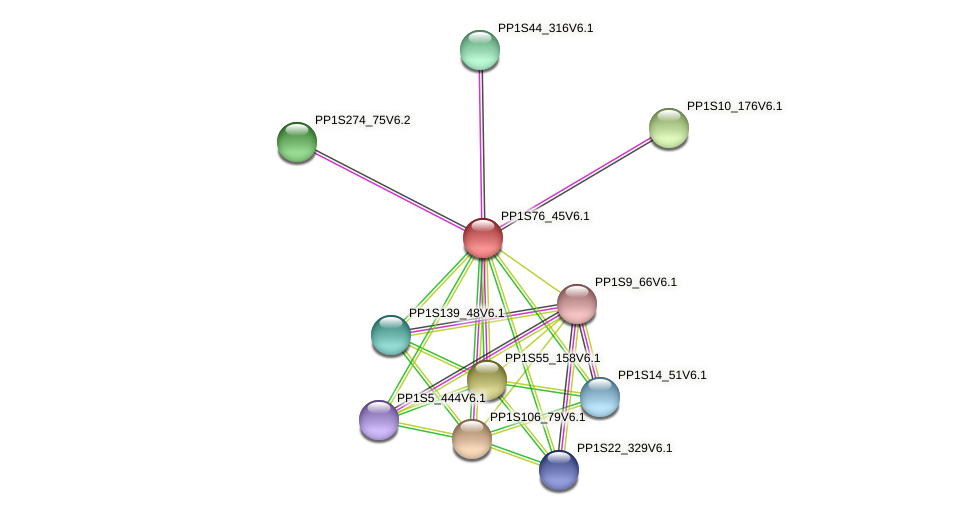 PP1S76_45V6.1 protein (Physcomitrella patens) - STRING interaction network