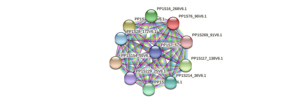 PP1S76_96V6.1 protein (Physcomitrella patens) - STRING interaction network