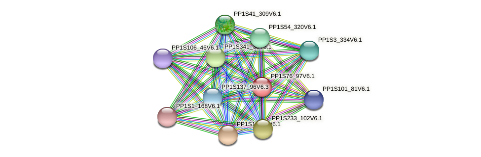 PP1S76_97V6.1 protein (Physcomitrella patens) - STRING interaction network
