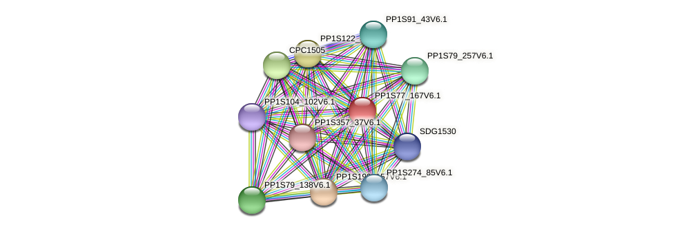 PP1S77_167V6.1 protein (Physcomitrella patens) - STRING interaction network