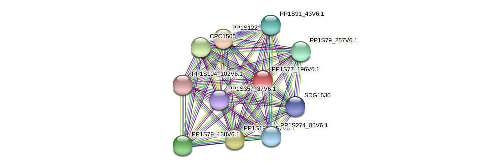 PP1S77_196V6.1 protein (Physcomitrella patens) - STRING interaction network