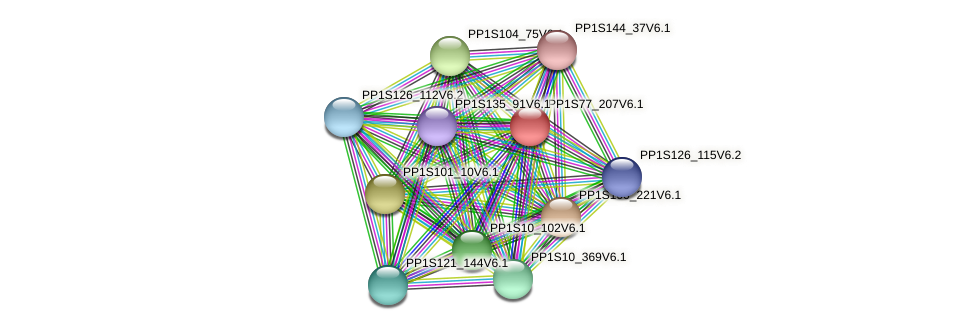 PP1S77_207V6.1 protein (Physcomitrella patens) - STRING interaction network