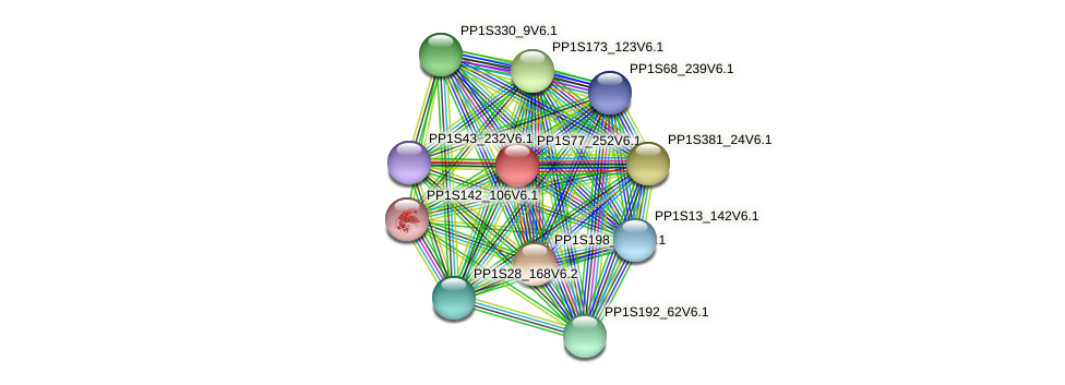PP1S77_252V6.1 protein (Physcomitrella patens) - STRING interaction network