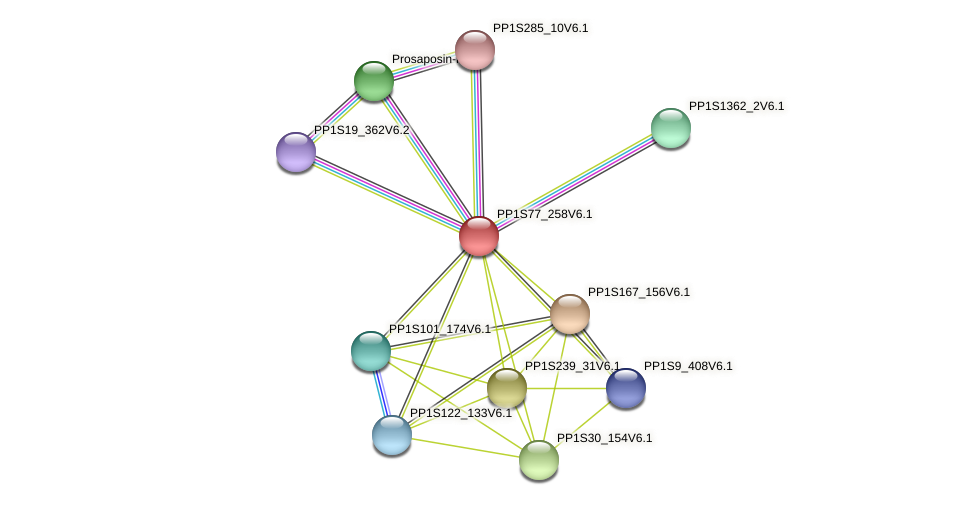 PP1S77_258V6.1 protein (Physcomitrella patens) - STRING interaction network