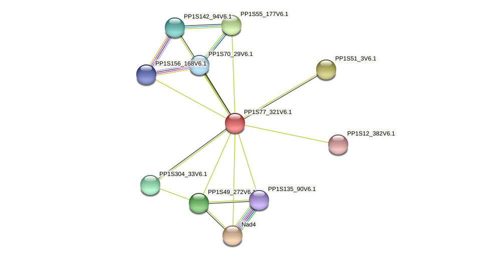 PP1S77_321V6.1 protein (Physcomitrella patens) - STRING interaction network