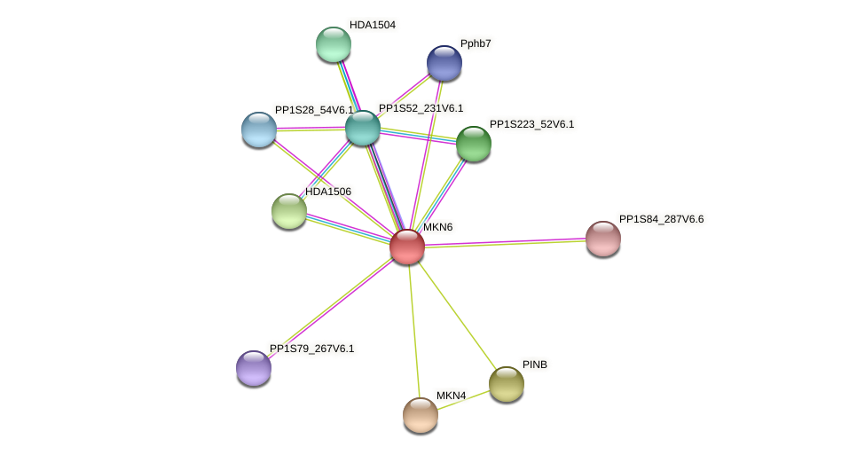 MKN6 protein (Physcomitrella patens) - STRING interaction network