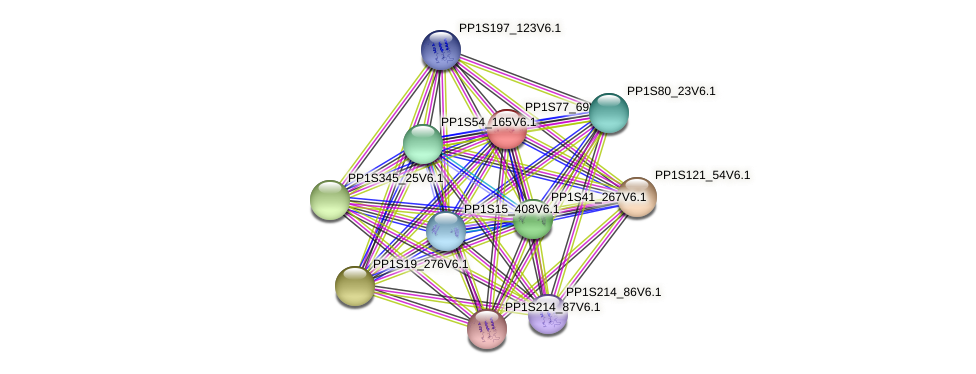 PP1S77_69V6.1 protein (Physcomitrella patens) - STRING interaction network