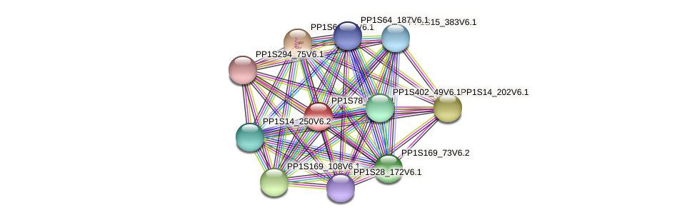 PP1S78_33V6.1 protein (Physcomitrella patens) - STRING interaction network