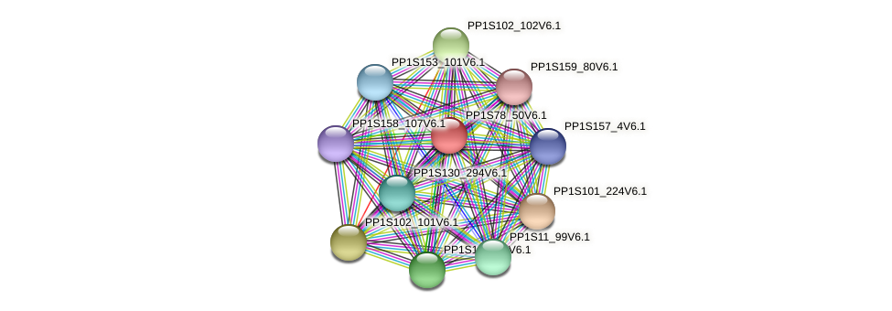 PP1S78_50V6.1 protein (Physcomitrella patens) - STRING interaction network