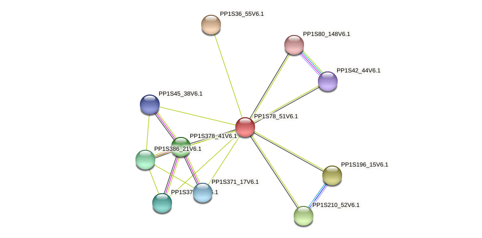 PP1S78_51V6.1 protein (Physcomitrella patens) - STRING interaction network