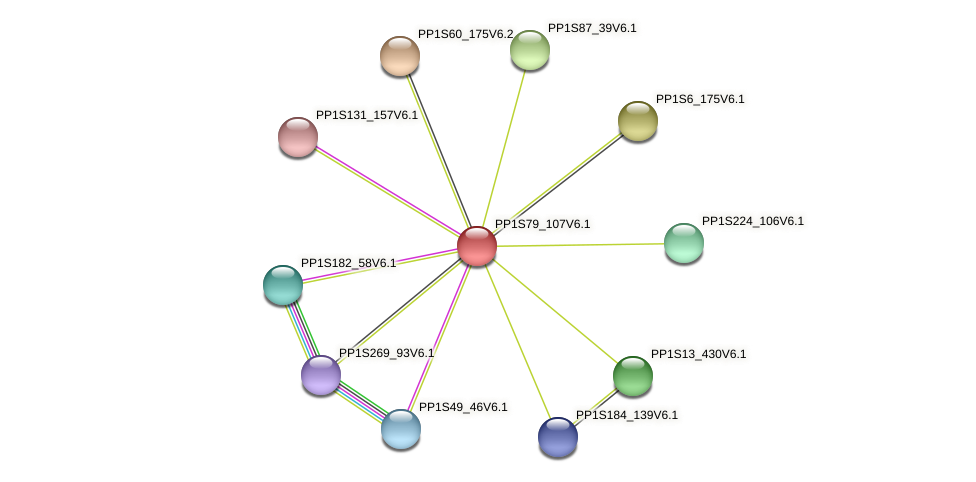 PP1S79_107V6.1 protein (Physcomitrella patens) - STRING interaction network