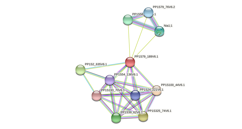 PP1S79_189V6.1 protein (Physcomitrella patens) - STRING interaction network