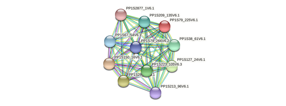 PP1S79_225V6.1 protein (Physcomitrella patens) - STRING interaction network