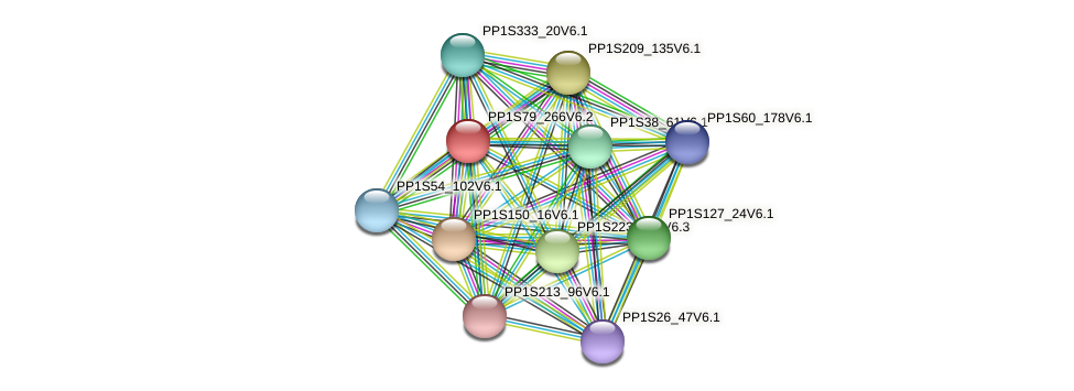 PP1S79_266V6.2 protein (Physcomitrella patens) - STRING interaction network