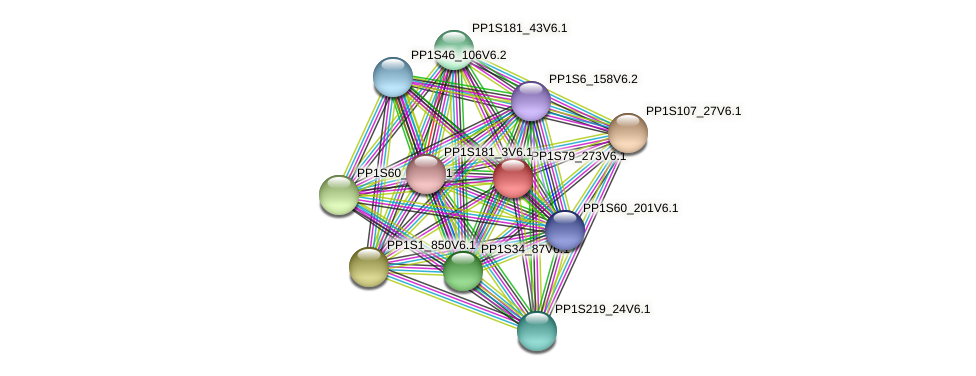 PP1S79_273V6.1 protein (Physcomitrella patens) - STRING interaction network