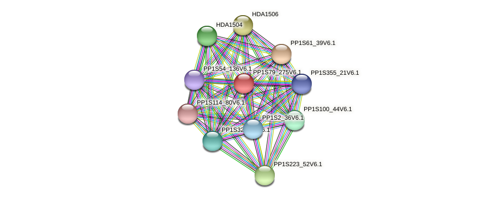 PP1S79_275V6.1 protein (Physcomitrella patens) - STRING interaction network
