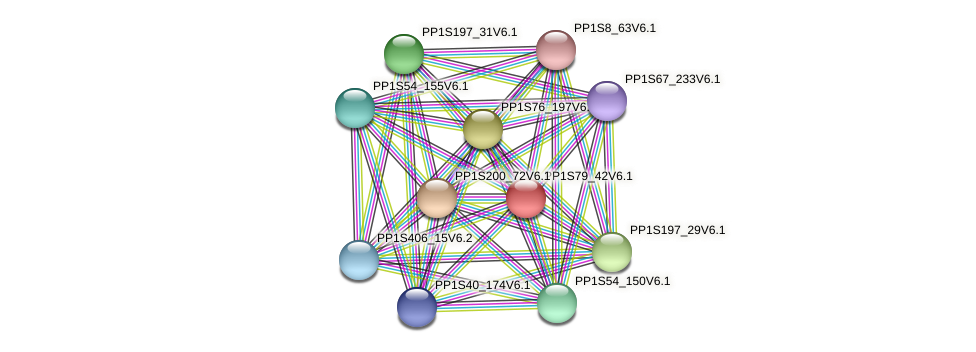 PP1S79_42V6.1 protein (Physcomitrella patens) - STRING interaction network