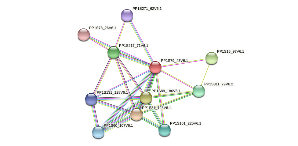 PP1S79_45V6.1 protein (Physcomitrella patens) - STRING interaction network
