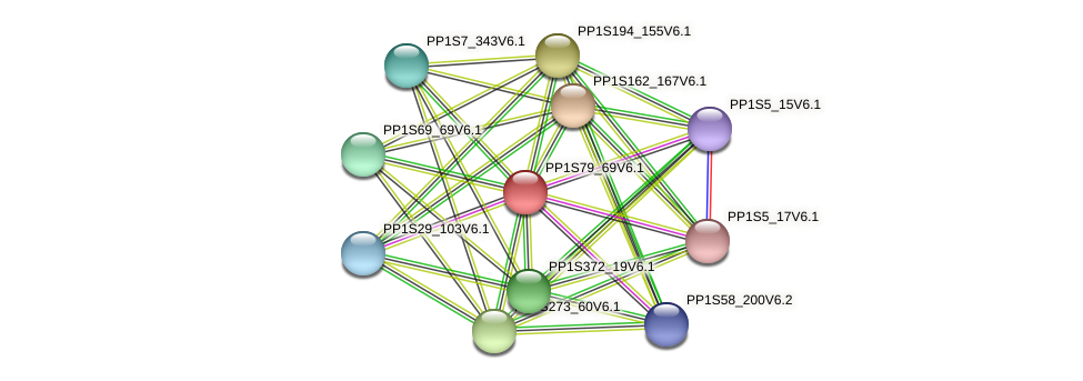 PP1S79_69V6.1 protein (Physcomitrella patens) - STRING interaction network