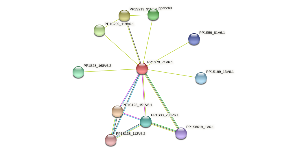 PP1S79_71V6.1 protein (Physcomitrella patens) - STRING interaction network