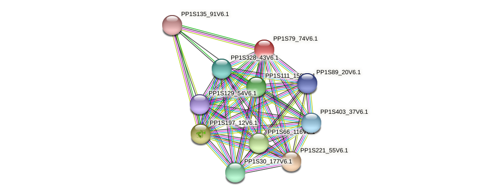 PP1S79_74V6.1 protein (Physcomitrella patens) - STRING interaction network