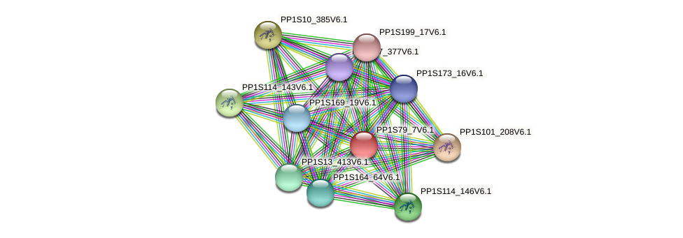 PP1S79_7V6.1 protein (Physcomitrella patens) - STRING interaction network
