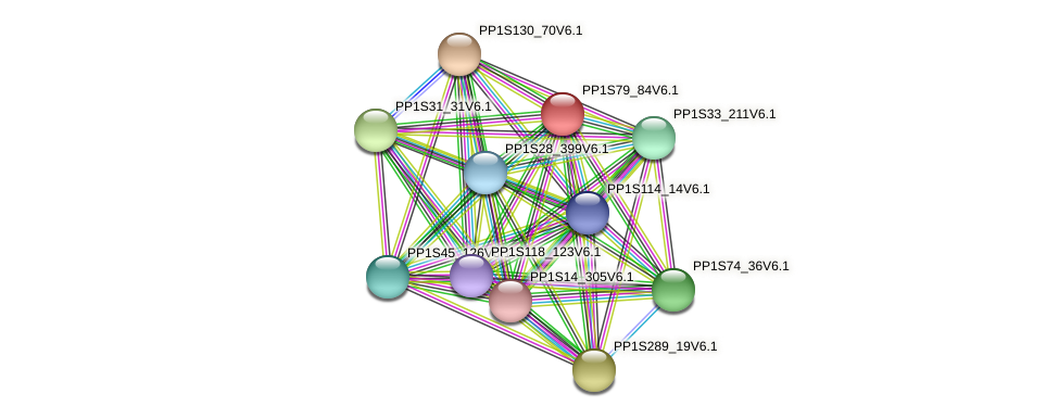 PP1S79_84V6.1 protein (Physcomitrella patens) - STRING interaction network