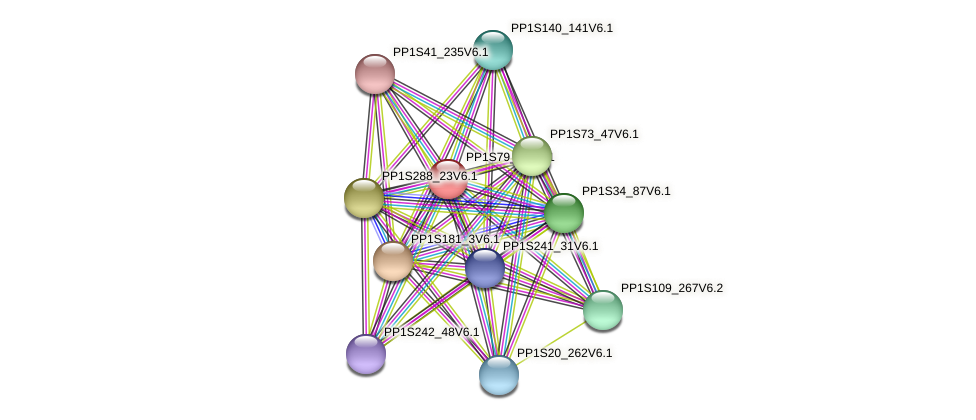 PP1S79_91V6.1 protein (Physcomitrella patens) - STRING interaction network