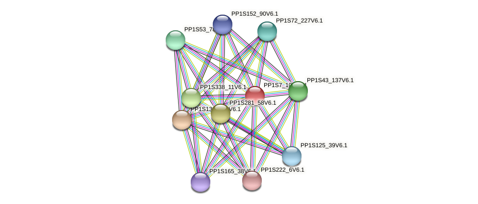 PP1S7_102V6.1 protein (Physcomitrella patens) - STRING interaction network