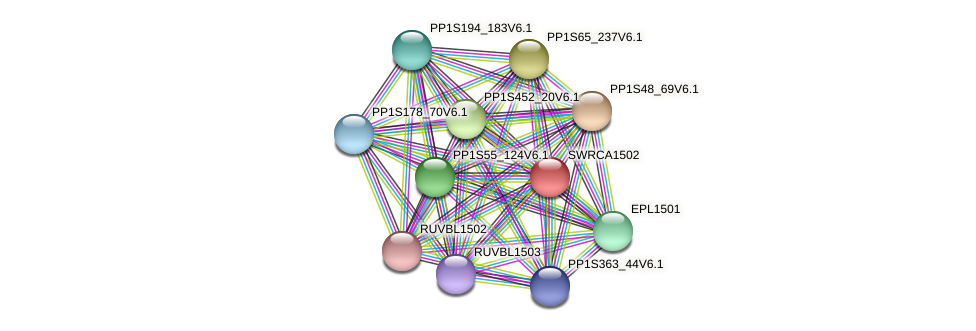SWRCA1502 protein (Physcomitrella patens) - STRING interaction network