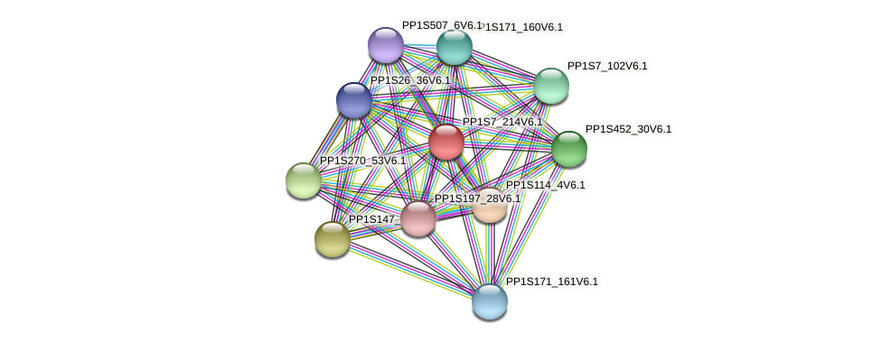 PP1S7_214V6.1 protein (Physcomitrella patens) - STRING interaction network