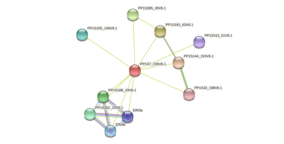 PP1S7_236V6.1 protein (Physcomitrella patens) - STRING interaction network