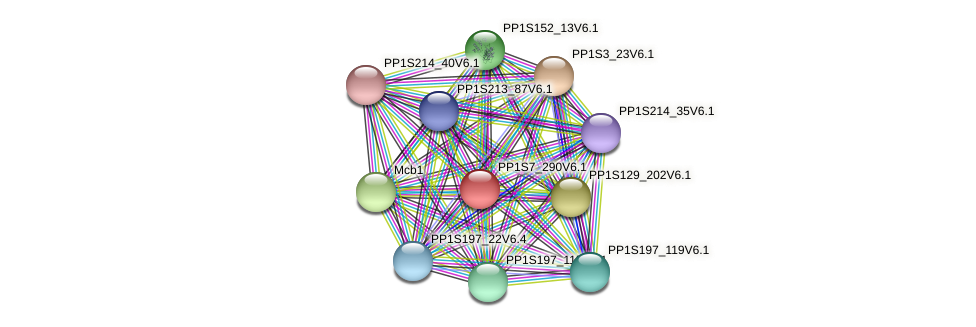 PP1S7_290V6.1 protein (Physcomitrella patens) - STRING interaction network