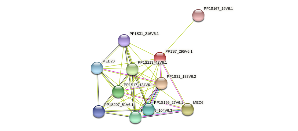 PP1S7_295V6.1 protein (Physcomitrella patens) - STRING interaction network