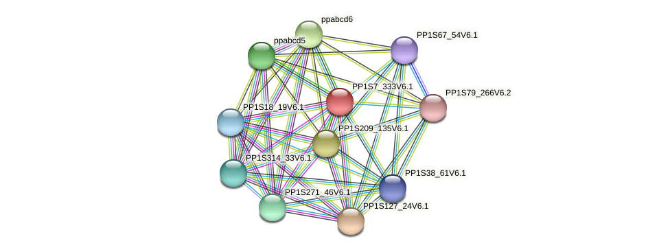PP1S7_333V6.1 protein (Physcomitrella patens) - STRING interaction network