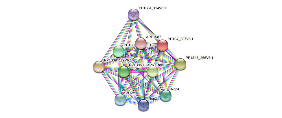 PP1S7_387V6.1 protein (Physcomitrella patens) - STRING interaction network