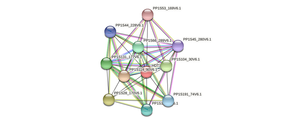 HDT1501 protein (Physcomitrella patens) - STRING interaction network