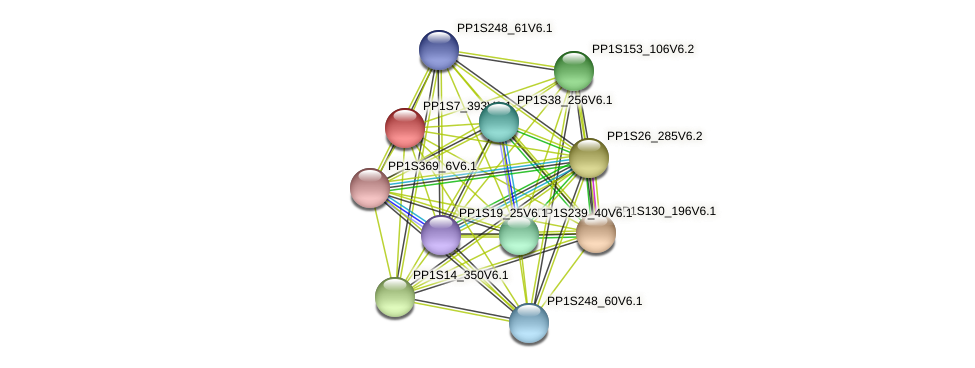 PP1S7_393V6.1 protein (Physcomitrella patens) - STRING interaction network