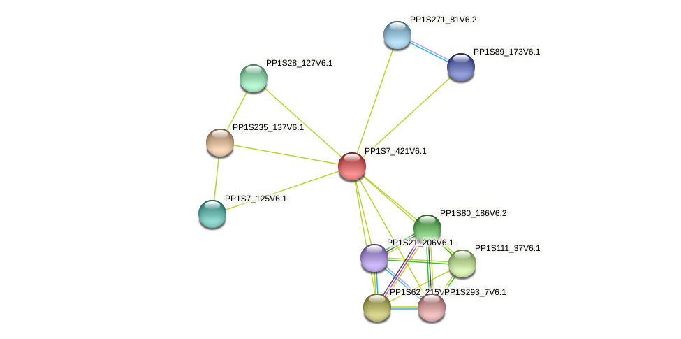 PP1S7_421V6.1 protein (Physcomitrella patens) - STRING interaction network